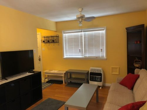 Comfortable Livingroom with flat screen TV. - Apple Barn Cottage in Flat Rock