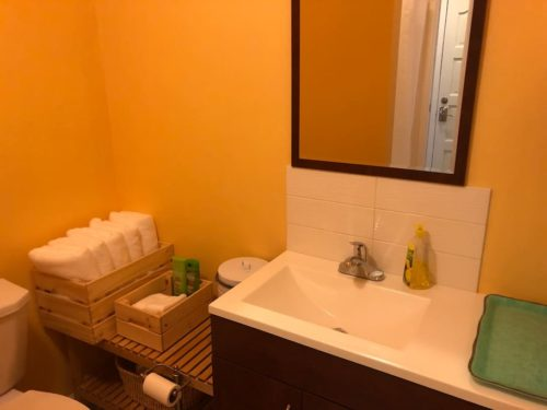 Newly remodeled Bathroom with everything you need - Apple Barn Cottage in Flat Rock