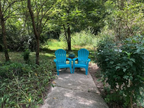 Private yard at Apple Barn Cottage in Flat Rock - Apple Barn Cottage in Flat Rock
