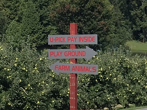 Orchard and directions to U-Pick, Playground and Farm Animals at Grandad's Apples
