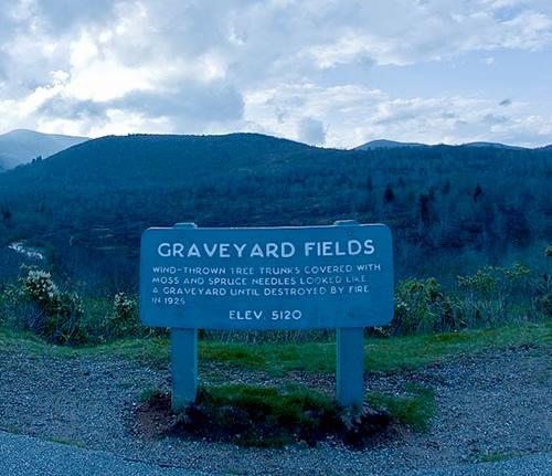 Graveyard Fields - Things to do near Meadowbrook Log Cabin