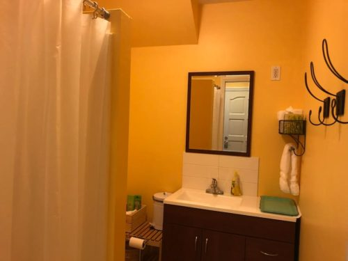 Newly remodeled bathroom with walk-in shower. - Apple Barn Cottage in Flat Rock
