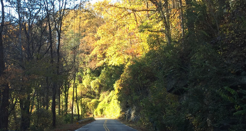 Late Fall Drive South along 176, the Old Spartanburg Highway