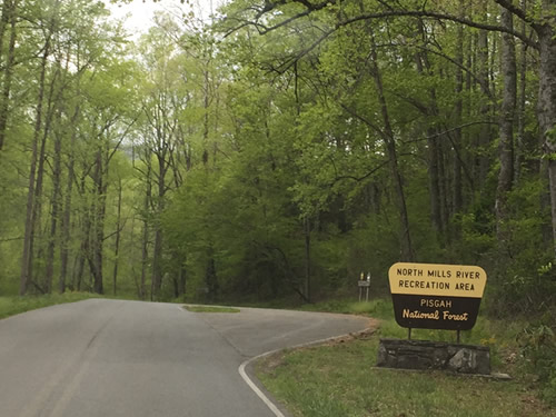 Entrance to North Mills River Recreation Area in Pisgah National Forest - In Henderson County - Things to do near Meadowbrook Log Cabin