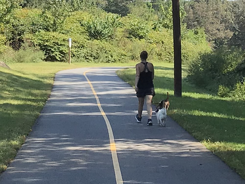 There is plenty of room for walking and biking. It is a great place to walk dogs. - Oklawaha Greenway Trail – Things to Do Near Meadowbrook Log Cabin