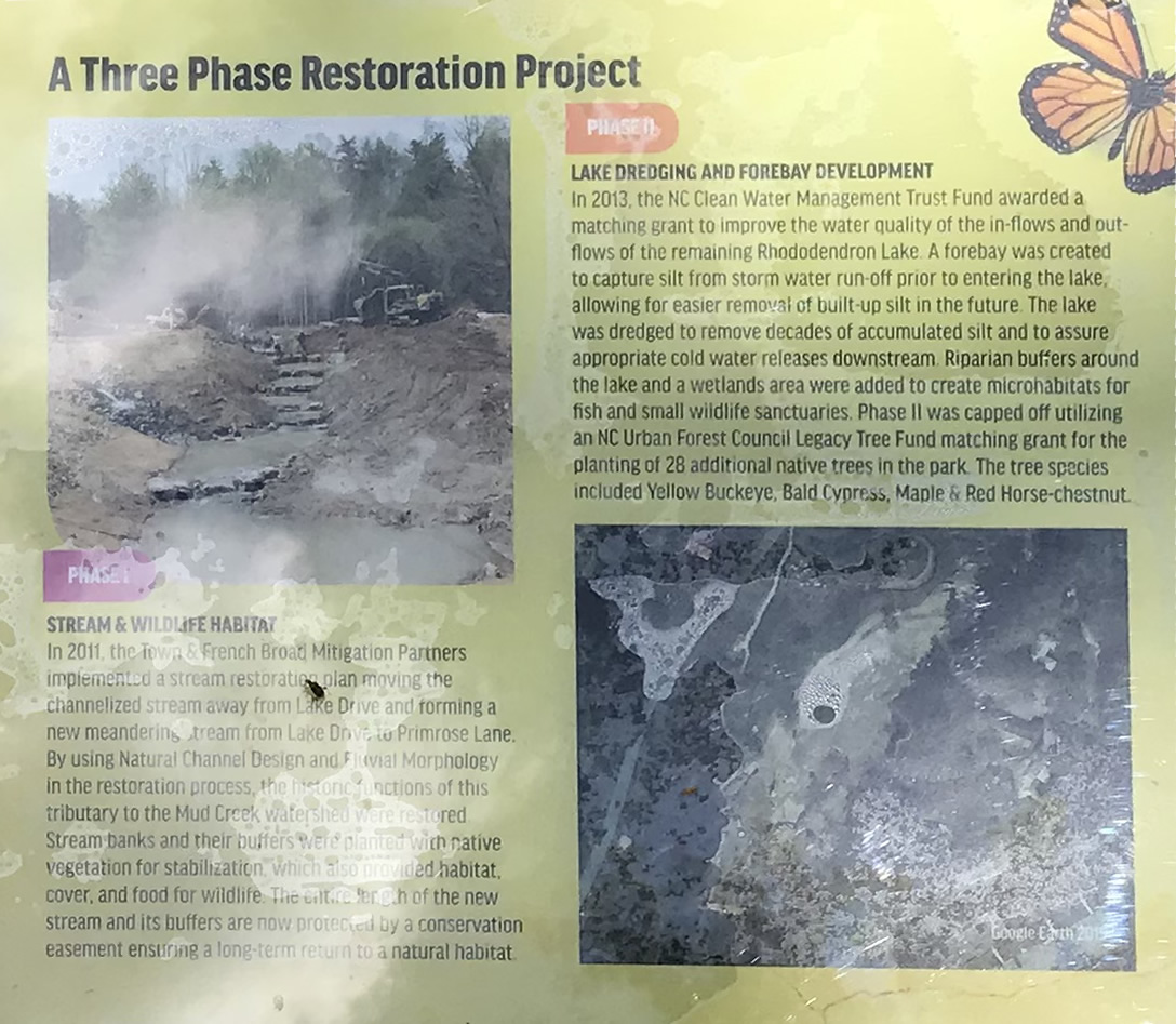 A Three Phase Restoration Project - Rhododendron Lake Nature Park – Things to do near Meadowbrook Log Cabin