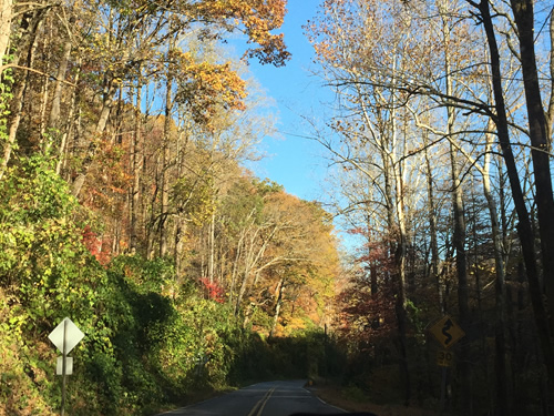 Curvy Road - Late Fall Drive South along 176, the Old Spartanburg Highway