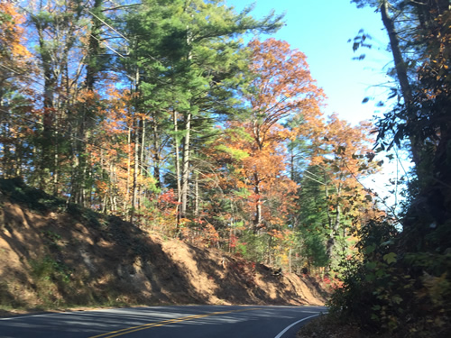 This is a nice drive any time of the year. - Late Fall Drive South along 176, the Old Spartanburg Highway
