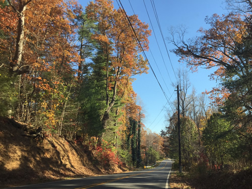 The colors get brighter as you drive south in late Fall - Late Fall Drive South along 176, the Old Spartanburg Highway