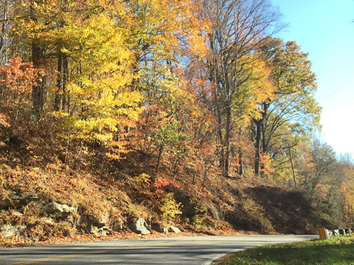 The road winds, but there is very little traffic - Late Fall Drive South along 176, the Old Spartanburg Highway
