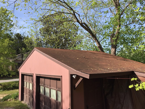 The robin flew over to the roof of the garage. - Robin on the Porch at Meadowbrook Log Cabin