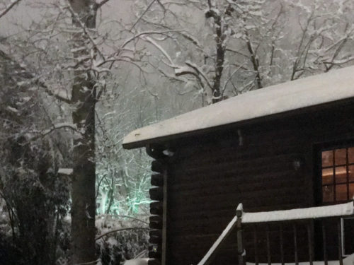 Snow in the Trees at the Back of the Log Cabin - Winter at the Cabin