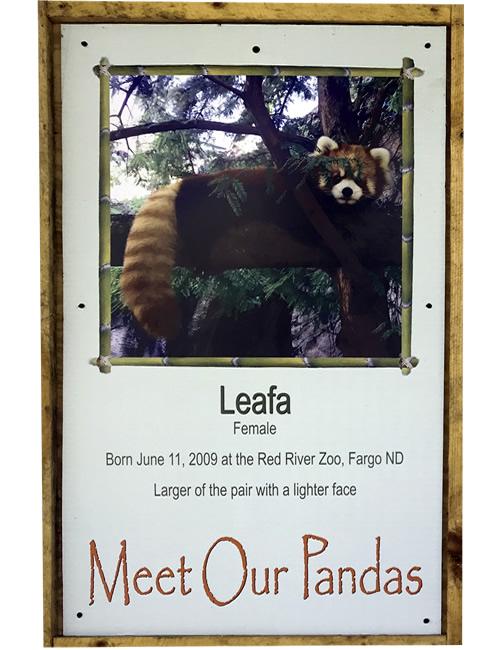 Meat Our Pandas: Leafa